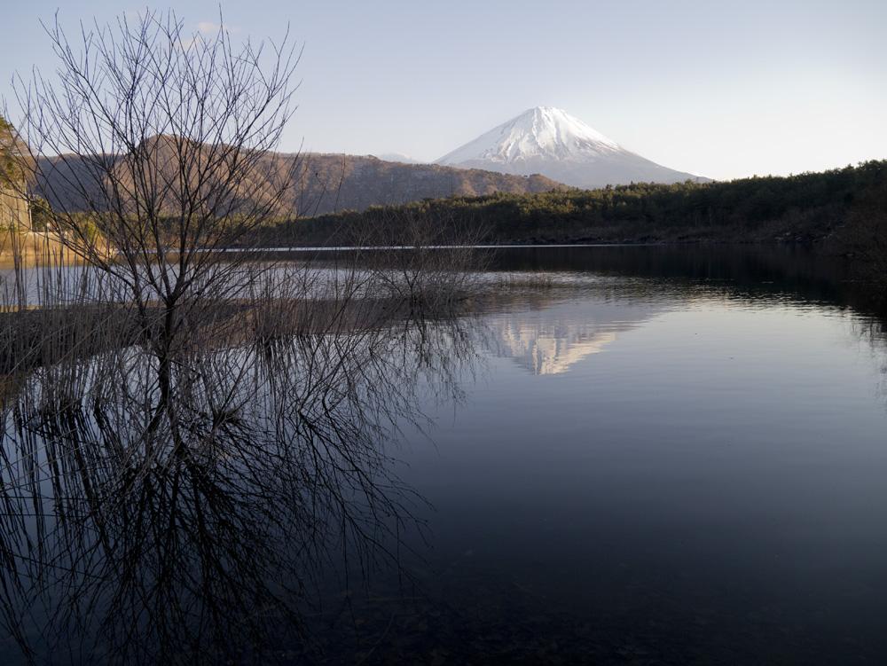 Fuji-Saiko1