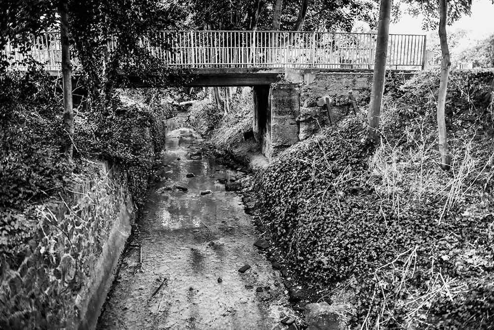 Moselle River, Tottenham