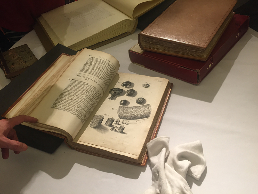 Robert Hooke Micrographia
